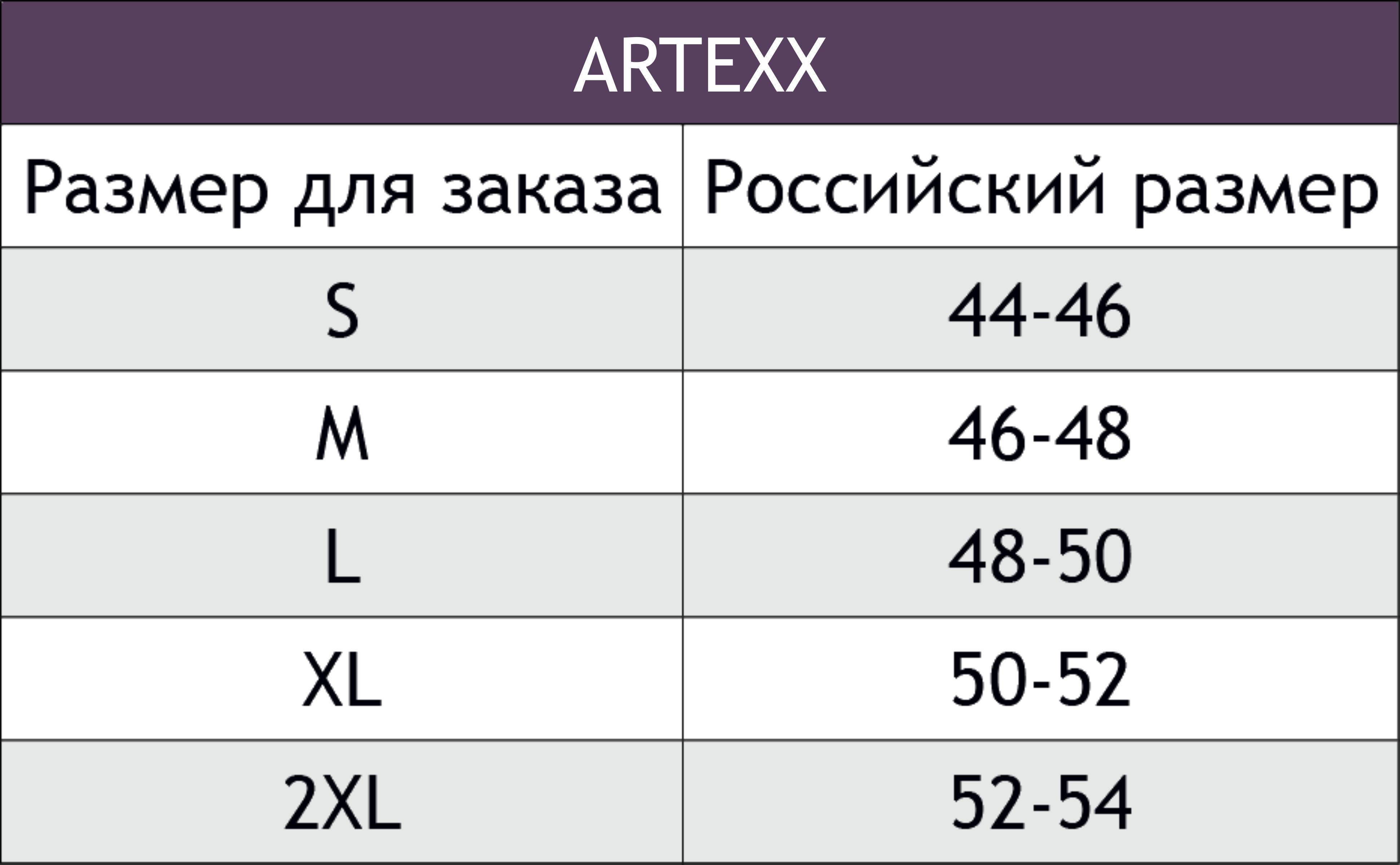 ARTEXX.png